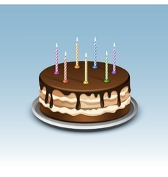 Birthday cake with candles numerals vector