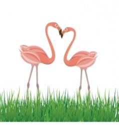 Flamingo in love vector
