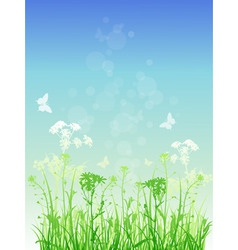 Vector floral background with green grass and butt vector