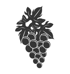 black bunch of gapes graphic vector image