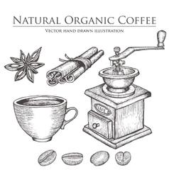 Coffee mill bean seed fruit cinnamon star vector image