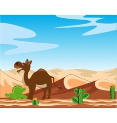 Desert and camel vector image