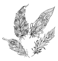 Feather Doodle Set vector image