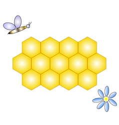 honeycomb bee and flower vector image