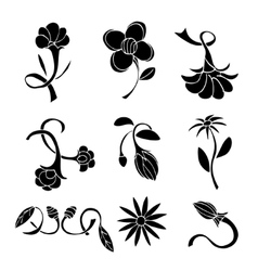 Set of black flower design elements vector