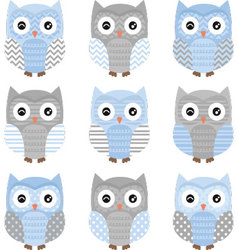 Blue and grey cute owl collections vector