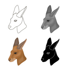 kangaroo icon in cartoon style isolated on white vector image