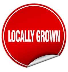 Locally grown round red sticker isolated on white vector