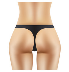 sexy women ass in black panties vector image