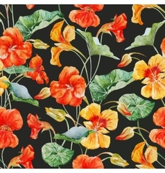 Watercolor nasturtium flower pattern vector