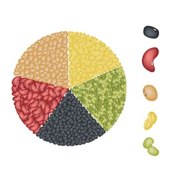 Set of beans in pie chart concept vector
