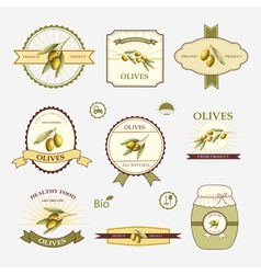 Olives set of label design and templates vector