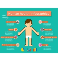 Human body systems medical infographics vector