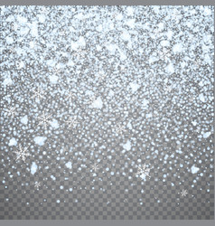 isolated christmas falling snow overlay on vector image