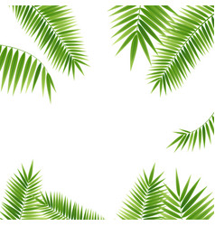 realistic 3d detailed green palm leaf frame vector image