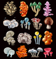 colorful magic mushrooms set vector image