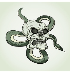 Skull and snake tattoo vector image vector image