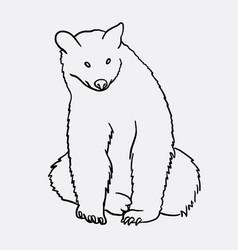 Bear animal artistic sketch vector
