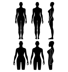 Woman mannequin outlined silhouette torso vector