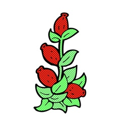 Comic cartoon rosehip flowers vector