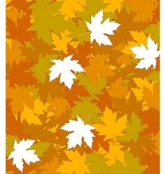 autumn concept background vector image