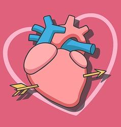 Heart arrow1 vector