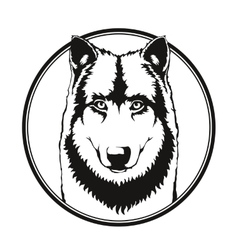Wolf in the circle vector
