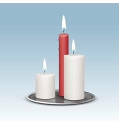 Candles on the Metal Candlesticks Trays vector image vector image