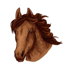 Horse animal muzzle sport team mascot icon vector