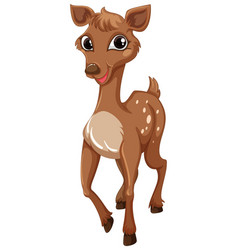 Little fawn with happy smile vector
