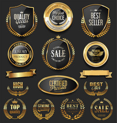 luxury retro badges gold and silver collection 5 vector image vector image
