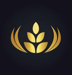 Wheat abstract food tree gold logo vector