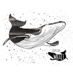 Hand drawn grunge watercolor whale vector image
