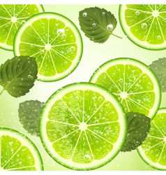 Background of Lime and Mint Leaves vector image vector image
