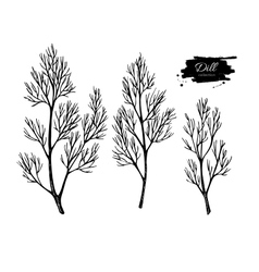 Dill hand drawn set isolated vector