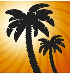 palms tree beach vector image vector image