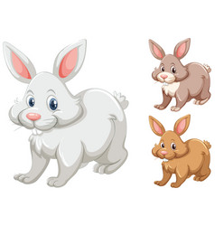 rabbits with three different colors vector image vector image