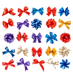 Big set of colorful gift bows with ribbons vector