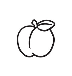 Apple sketch icon vector