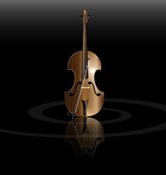 string instrument vector image vector image