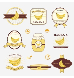 Banana set of label design and templates vector