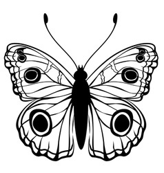 illustration of detailed butterfly silhouet vector