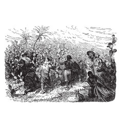 Gathering cochineal in algeria vintage vector