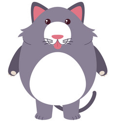 gray cat with silly face vector image vector image