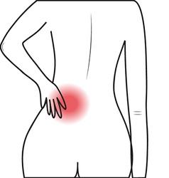 Human lumbar pain vector image