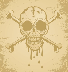 Skull paper vector image vector image