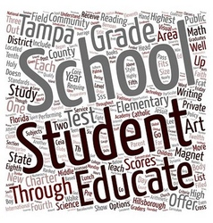 Tampa schools text background wordcloud concept vector
