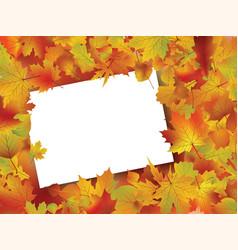 Thanksgiving fall autumn background vector