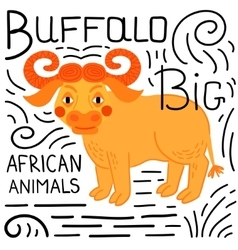 Buffalo on a white background isolated vector