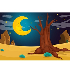 A moonlight evening vector image vector image